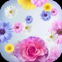 Fondos Animados de Flores