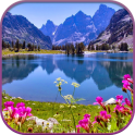 HD Nature Live Wallpaper