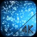Falling Snowflakes Live WP