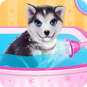 Husky Puppy Spa Salon