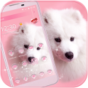 Puppy Dog Theme pink pet