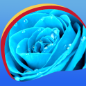 Blue Rose Live Wallpapers