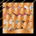 Seashells Keyboards