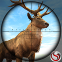 Animal Hunting Sniper Shooting Game 2020
