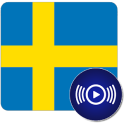 SE Radio - Swedish Online Radios
