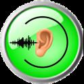Tinnitus Describer