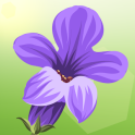 Lucky Lavender - Grow your plant for free Luck!