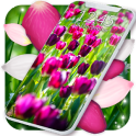 Spring Petals Live Wallpaper ❤️ Flower Wallpapers