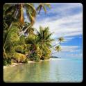Sea and Tropics Wallpapers!