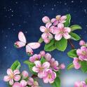 Night Sakura Live Wallpaper