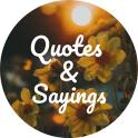 11000 Quotes, Sayings & Status
