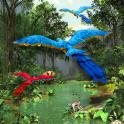 3D Rainforest Live Wallpaper