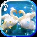 Swans Nobles LWP