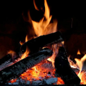Real Fireplace Live Wallpaper PRO