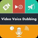 Video Voice Dubbing