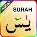 Surah Yaseen with Sound ( سورة يس)
