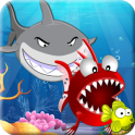 Hungry Piranha & Shark Fish