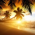 समुद्र तट पर सूर्यास्त लाइव वॉ