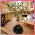 Wooden Interior Designs | Modern Home Ideas