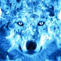 Ice Fire Wolf Wallpaper