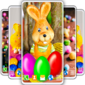 Easter Bunny Live Wallpaper Rabbit 4K Wallpaper