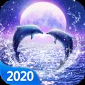 Romántica Dolphin fondo de pantalla en vivo
