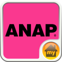 ANAP-ANAP INTERFACE Theme