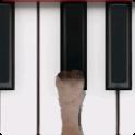Sheep Piano