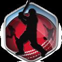 Box Cricket International 2016
