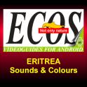 Sounds and Colours 2 - Eritrea