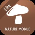 iKnow Mushrooms 2 LITE