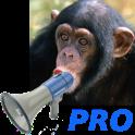 Zoo Sound Board Pro