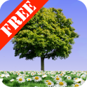 Summer Trees Free