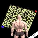 Maze Bricks 3D