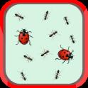 Ladybug and ants