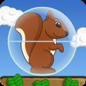 Squirrel Ball