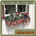 Window Box Planter Ideas