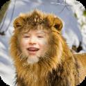 Lion Face Photo Editor