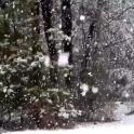 Snowing Live Wallpaper HD 6