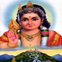 Lord Murugan Wallpapers,Bhajan