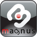 Czech Dictionaries Magnus