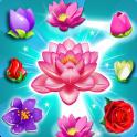 Blossom Splash