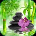 Relax Meditation Sounds