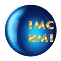Definitive BMI