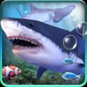 Аквариум с акулами.
