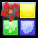 Flick and Vanish Puzzle Game