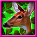 Forest Animals Slots