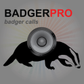 Badger Calls For Hunting UK