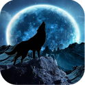 Blue Moon Wolf Live Wallpaper
