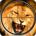 Lion Hunting Sniper Shooting